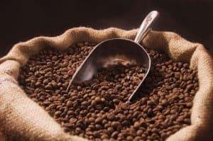australian coffee roasts supplier